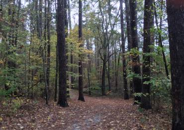A 5K wooded fitness trail rings the Duke University Golf Club minutes from the Divinity School.